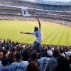 Yankees Stadium, NY - Parisa Khobdeh
